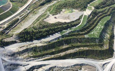 Réhabiliter et reverdir 100 hectares de sol minier stérile : le génie de Viridis en action