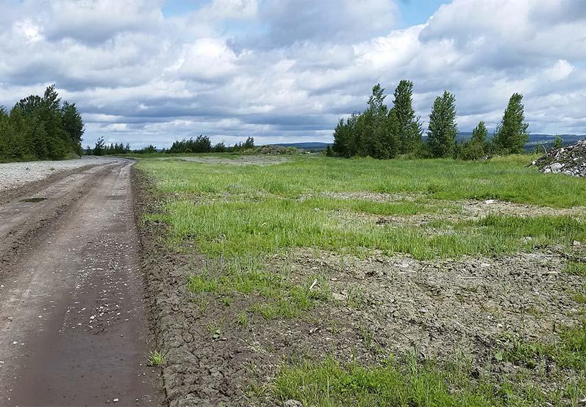 En plus de remettre le site en valeur, les travaux de restauration permettent le contrôle de l'érosion grâce à l'implantation d'une couverture végétale permanente. Cette image illustre la première année de croissance d'un site ensemencé à l'automne précédent. Les végétaux implantés finiront par couvrir toutes les zones dénudées.