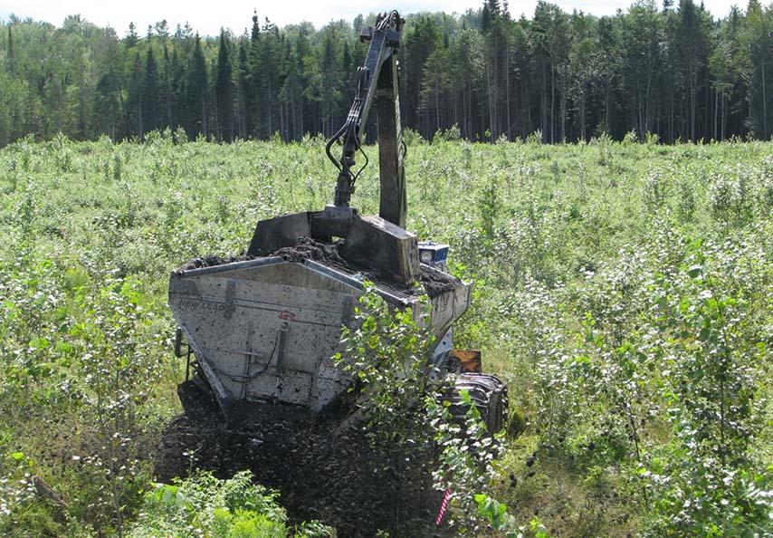 Les équipements de Domtar doivent pouvoir être déplacés sur les plantations de peupliers hybrides pour fertiliser les jeunes arbres sans les endommager.    Crédit: Domtar