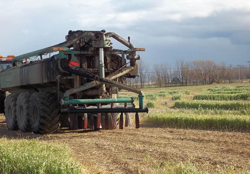 Viridis gère annuellement plus de 80 000 tonnes de matières provenant de l'industrie agroalimentaire. La majorité est épandue à l'état liquide sur les terres agricoles réceptrices.