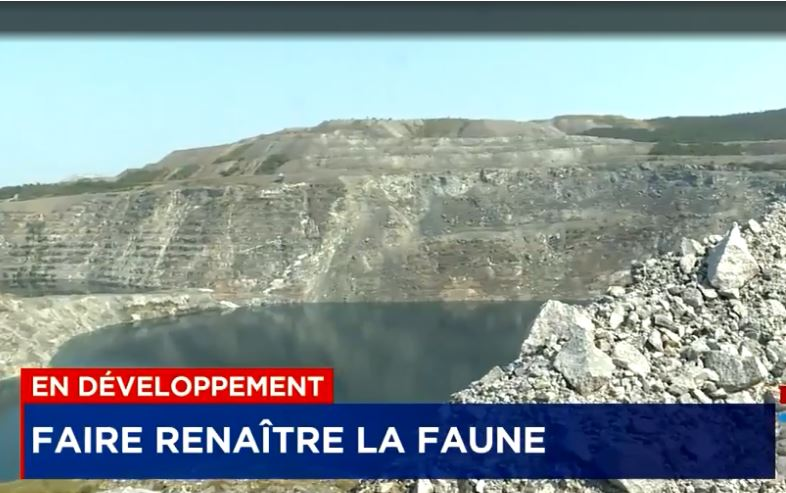 Organic residues to revive the vegetation: Granilake and Viridis Environmental are bringing nature back to life at the Black Lake mine